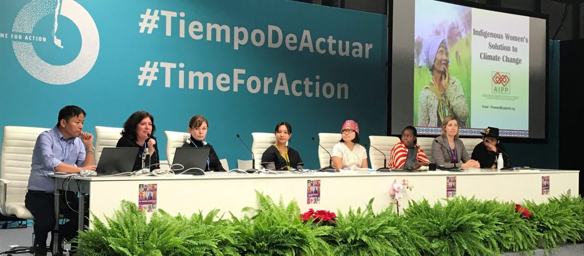 In September 2020 the Asia Indigenous Peoples' Pact (AIPP) and International Work Group for Indigenous Affairs (IWGIA) presented a joint submission to the UNFCCC calling for the full consideration and engagement of Indigenous Peoples' in climate action.