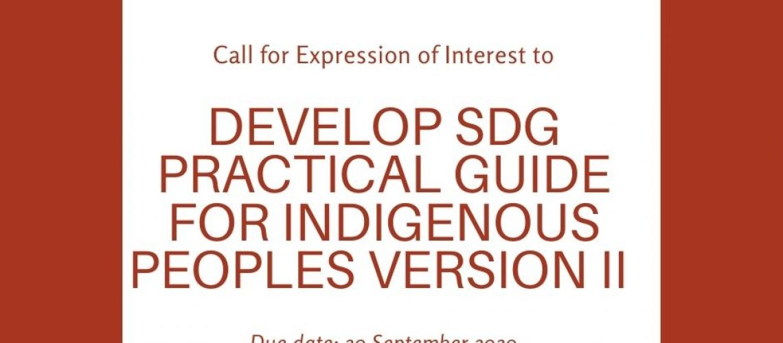 call for EIO to develop SDG practical guide
